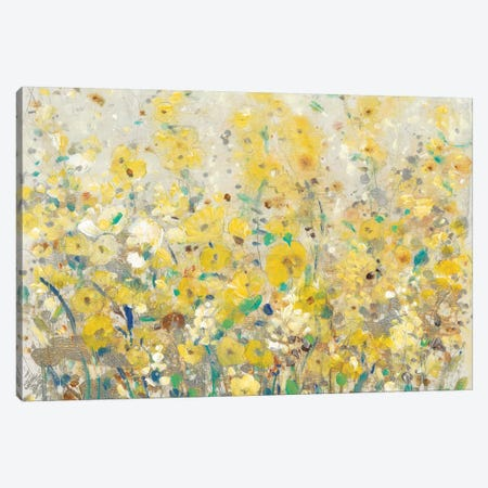 Cheerful Garden I Canvas Print #TOT236} by Tim OToole Canvas Print