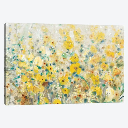 Cheerful Garden II Canvas Print #TOT237} by Tim OToole Canvas Art Print