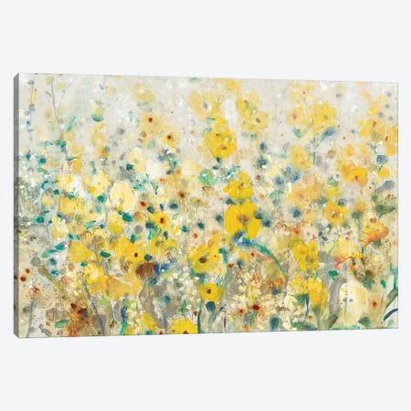 Cheerful Garden II Canvas Print #TOT237} by Tim OToole Canvas Art Print