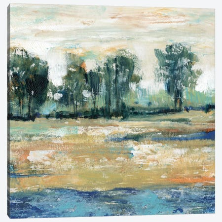 Blue Shade I Canvas Print #TOT23} by Tim OToole Canvas Art Print