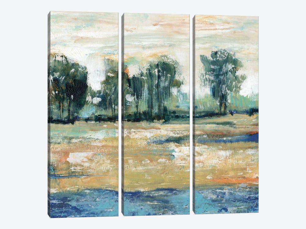 Blue Shade I by Tim OToole 3-piece Canvas Art
