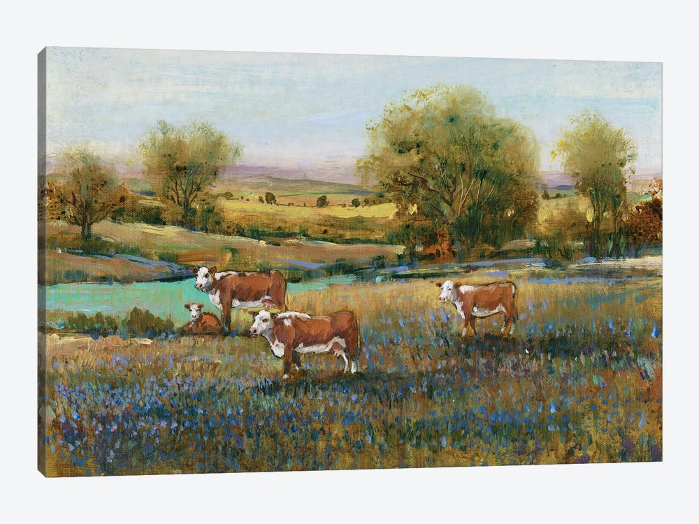 Field Of Cattle II by Tim O'Toole 1-piece Canvas Art Print