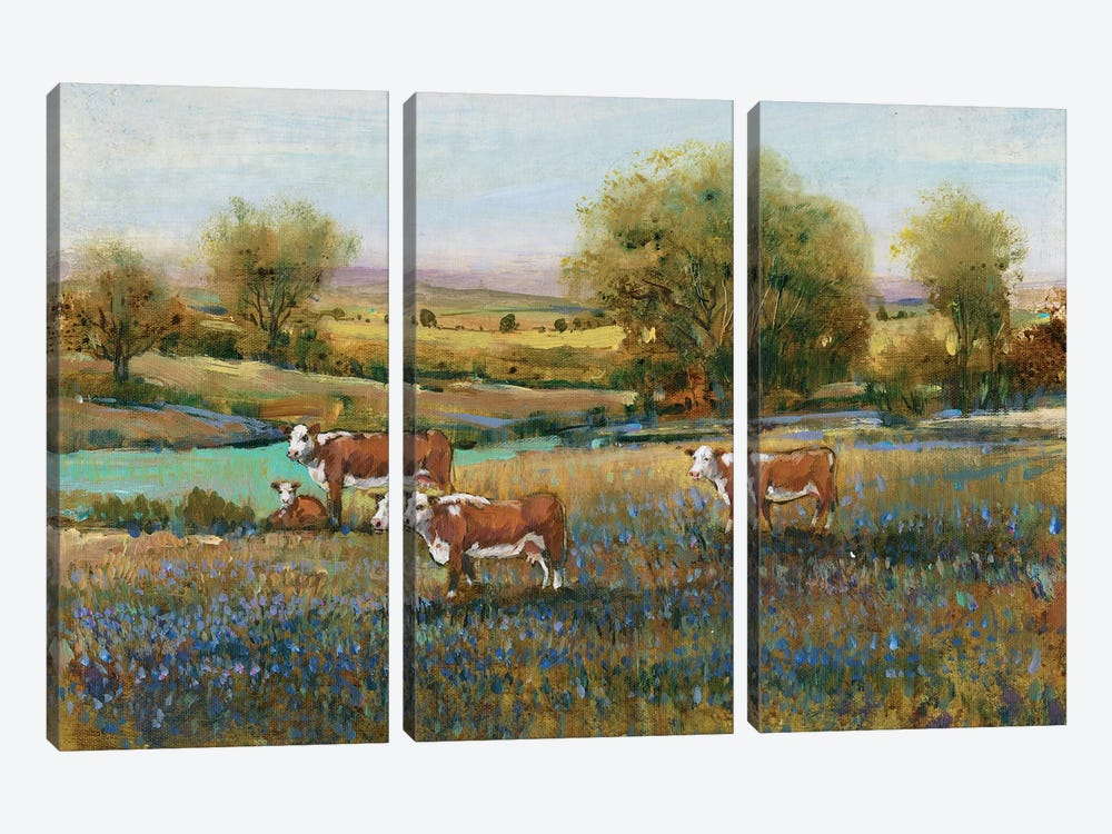 Field Of Cattle II by Tim O'Toole 3-piece Art Print
