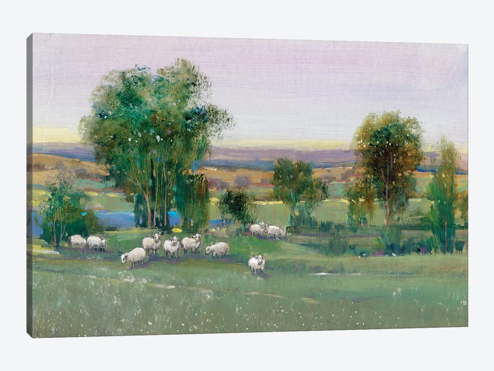 Field Of Sheep II 1-piece Canvas Print