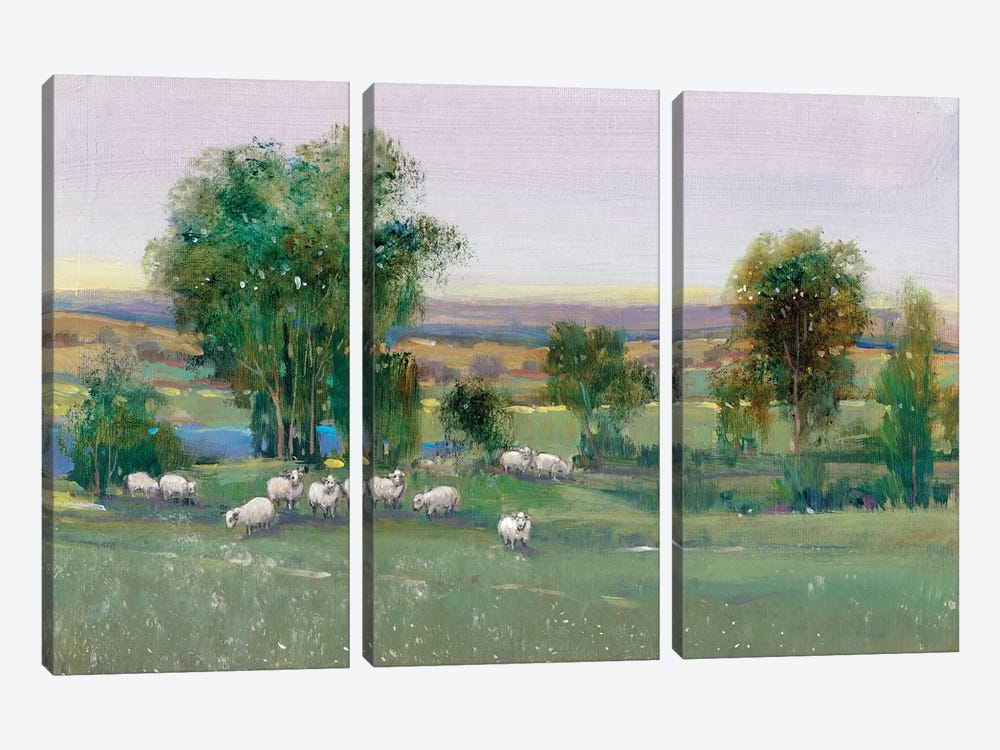 Field Of Sheep II by Tim O'Toole 3-piece Art Print