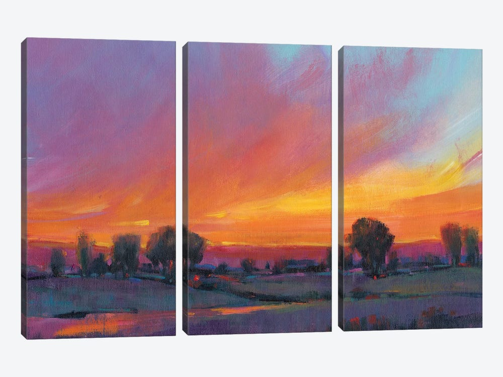 Fiery Sunset II by Tim O'Toole 3-piece Canvas Art Print