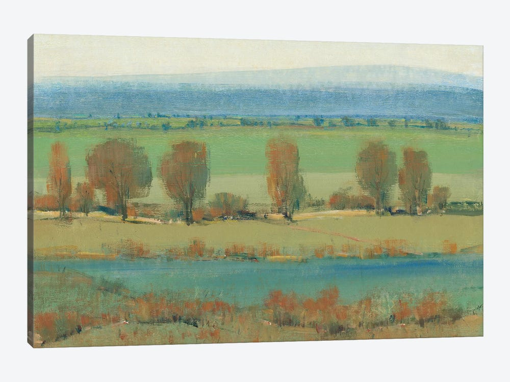 Flat Terrain I by Tim O'Toole 1-piece Canvas Wall Art