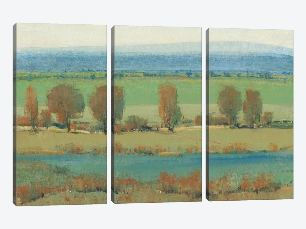 Flat Terrain I by Tim O'Toole 3-piece Canvas Artwork