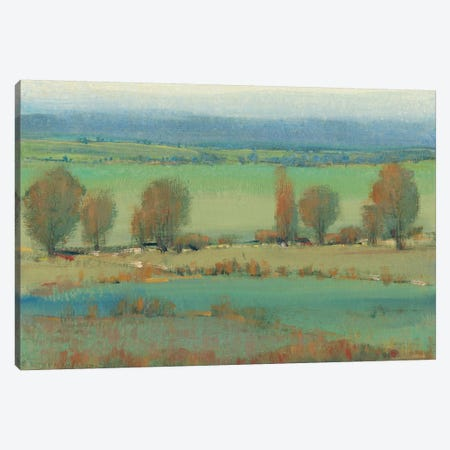 Flat Terrain II Canvas Print #TOT247} by Tim OToole Canvas Art