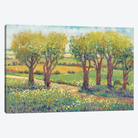 Garden Path I Canvas Print #TOT248} by Tim OToole Canvas Art Print