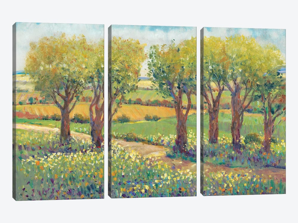 Garden Path I by Tim O'Toole 3-piece Canvas Wall Art