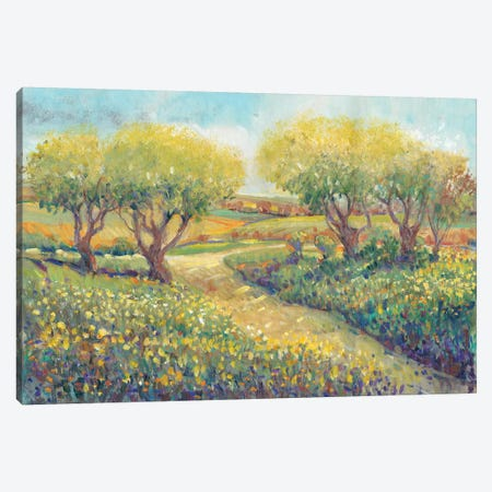 Garden Path II Canvas Print #TOT249} by Tim OToole Canvas Print