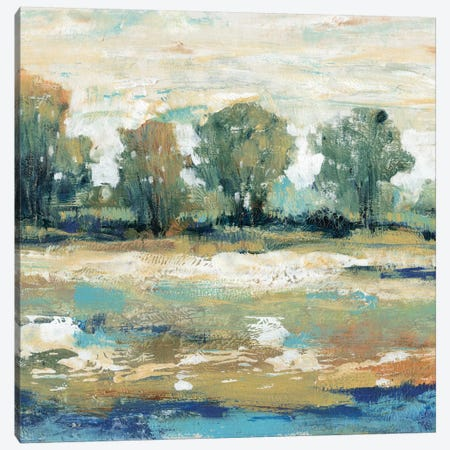Blue Shade II Canvas Print #TOT24} by Tim OToole Canvas Wall Art