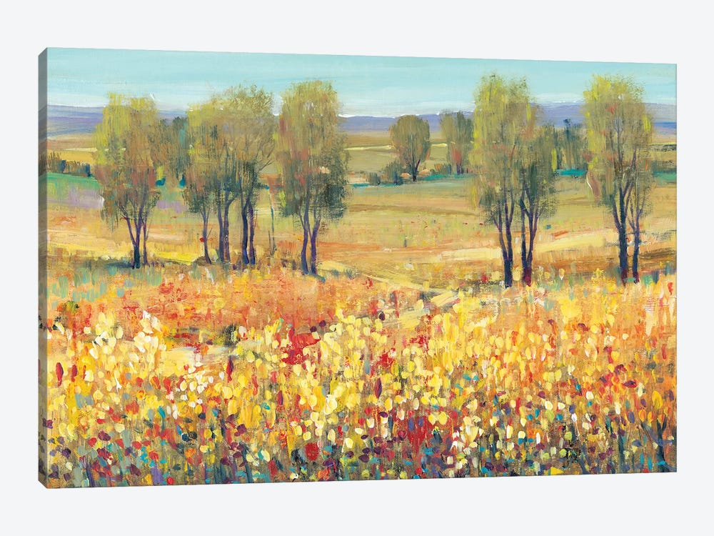 Golden Fields I by Tim O'Toole 1-piece Canvas Art Print