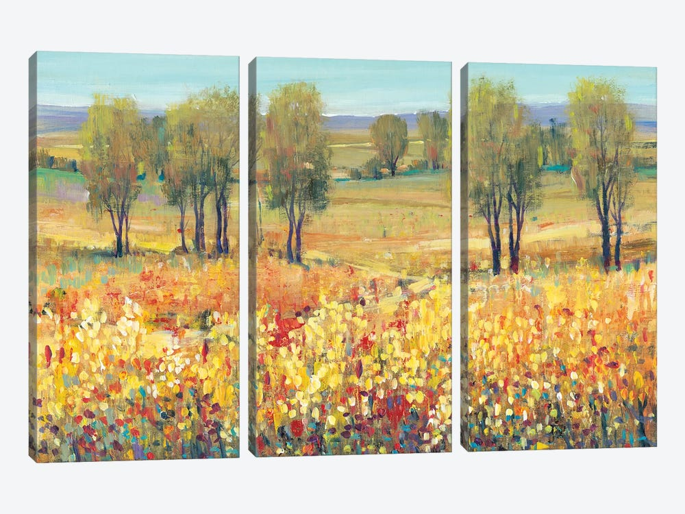 Golden Fields I by Tim O'Toole 3-piece Canvas Art Print