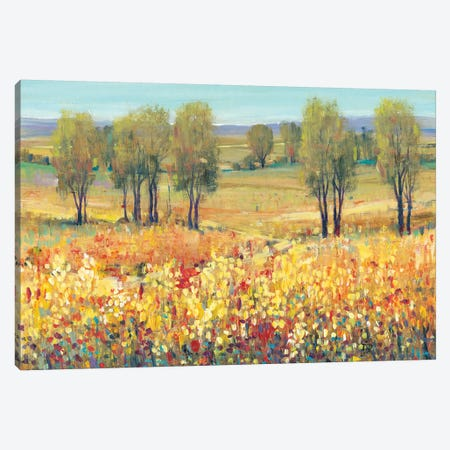Golden Fields I 3-Piece Canvas #TOT250} by Tim OToole Canvas Artwork