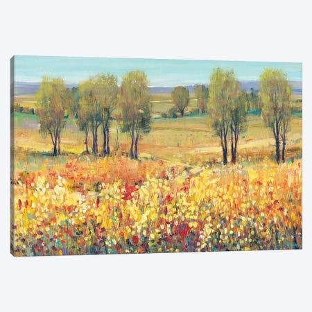 Golden Fields I Canvas Print #TOT250} by Tim OToole Canvas Artwork