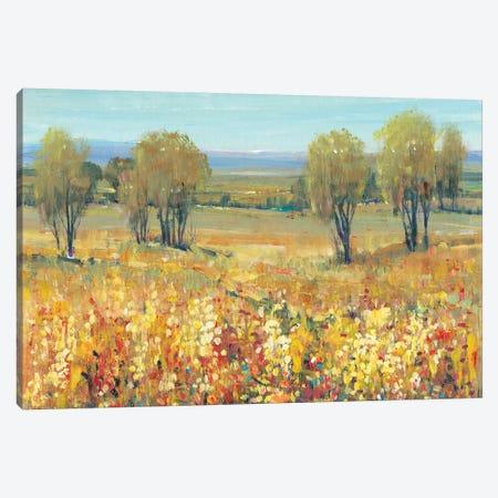 Golden Fields II Canvas Print #TOT251} by Tim OToole Canvas Wall Art