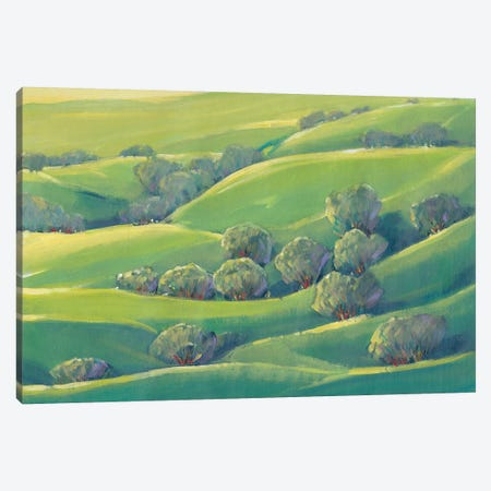 Hillside View I Canvas Print #TOT252} by Tim OToole Canvas Art