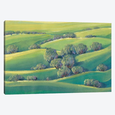 Hillside View II 3-Piece Canvas #TOT253} by Tim OToole Canvas Art