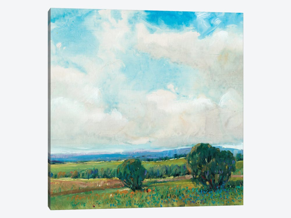 Looming Clouds II by Tim O'Toole 1-piece Canvas Artwork