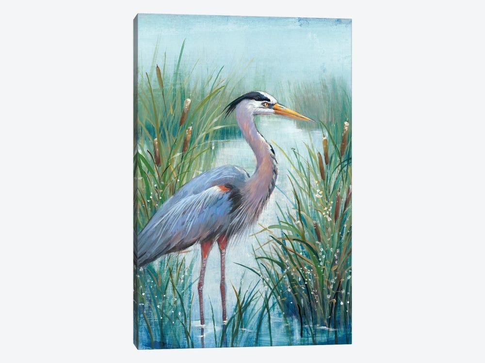 Marsh Heron I by Tim OToole 1-piece Canvas Print