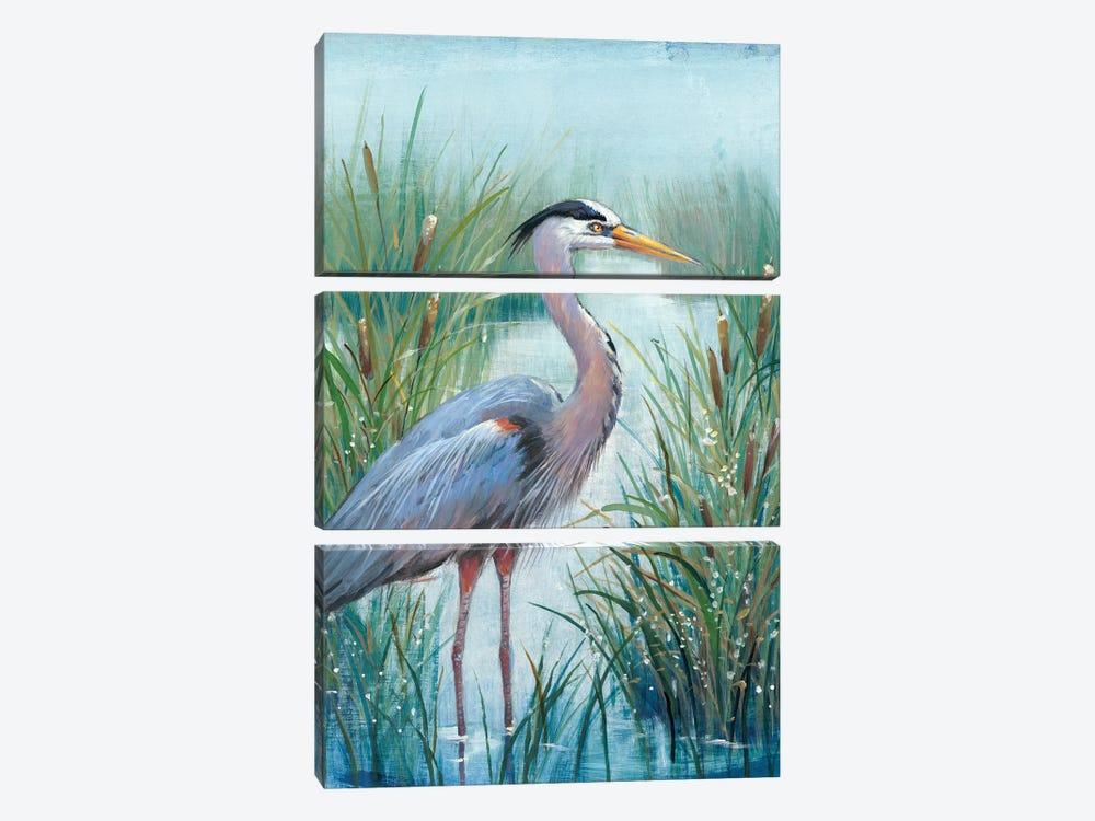 Marsh Heron I by Tim OToole 3-piece Canvas Art Print