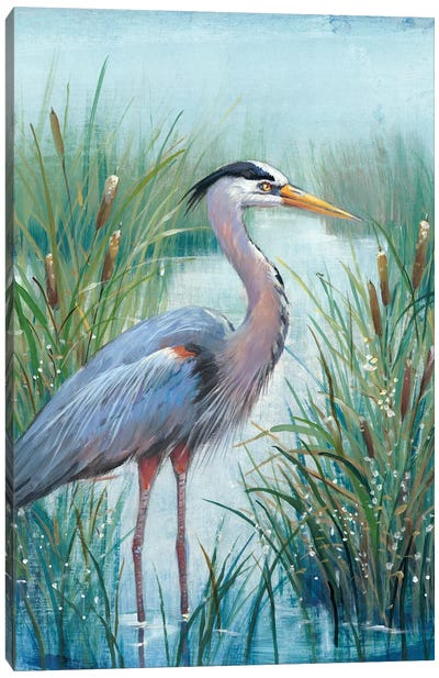 Marsh Heron I Canvas Art Print
