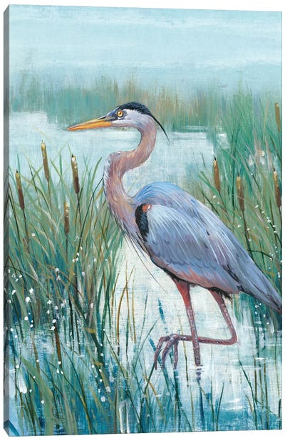 Marsh Heron II Canvas Art Print