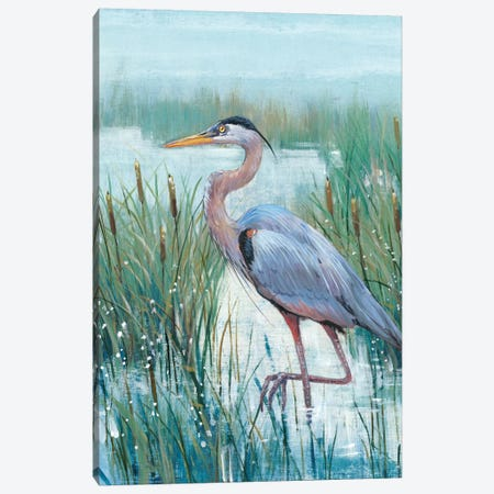 Marsh Heron II 3-Piece Canvas #TOT257} by Tim OToole Canvas Print