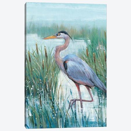 Marsh Heron II Canvas Print #TOT257} by Tim OToole Canvas Print