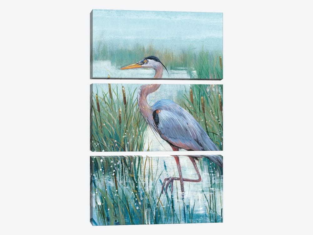 Marsh Heron II by Tim OToole 3-piece Canvas Wall Art