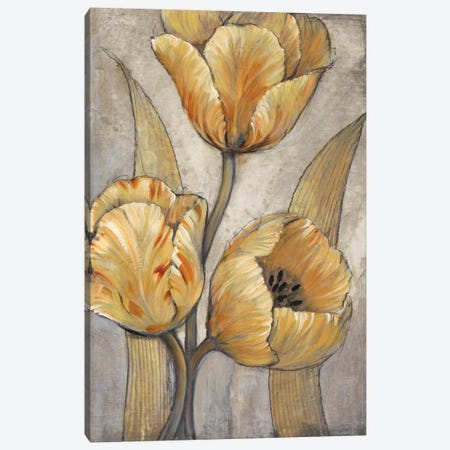 Ochre & Grey Tulips I Canvas Print #TOT258} by Tim OToole Canvas Art