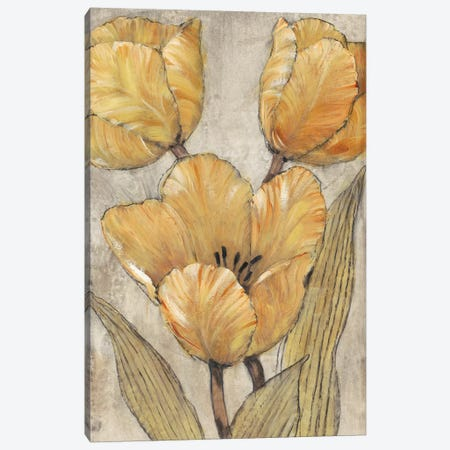 Ochre & Grey Tulips II Canvas Print #TOT259} by Tim O'Toole Canvas Artwork