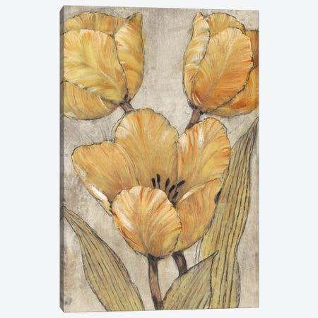 Ochre & Grey Tulips II Canvas Print #TOT259} by Tim OToole Canvas Artwork