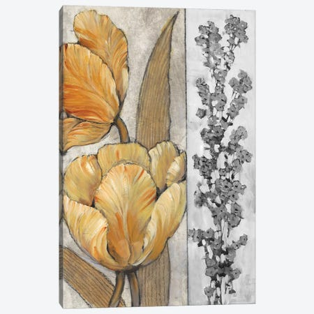 Ochre & Grey Tulips III Canvas Print #TOT260} by Tim O'Toole Canvas Print