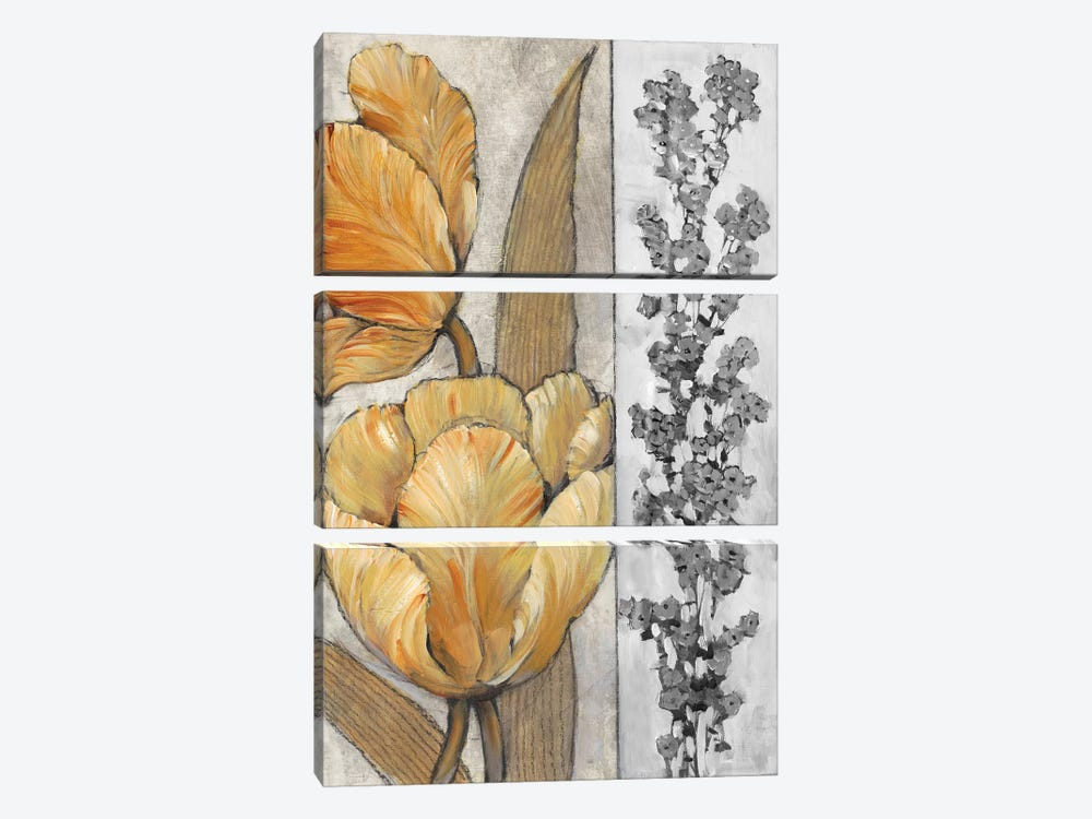 Ochre & Grey Tulips III by Tim OToole 3-piece Canvas Art
