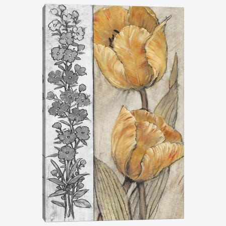 Ochre & Grey Tulips IV Canvas Print #TOT261} by Tim OToole Canvas Art Print