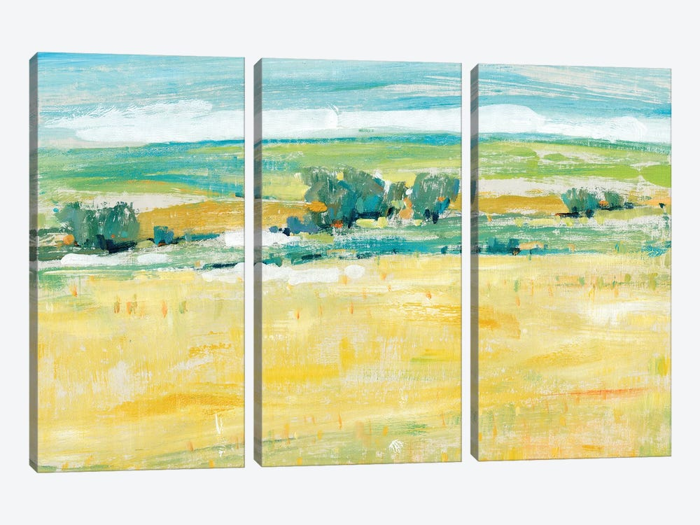 Summer Heat II by Tim OToole 3-piece Canvas Art Print