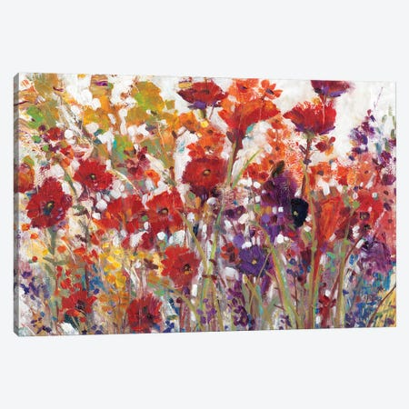 Variety Of Flowers I Canvas Print #TOT270} by Tim OToole Canvas Artwork