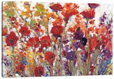 Variety Of Flowers I Canvas Art Print