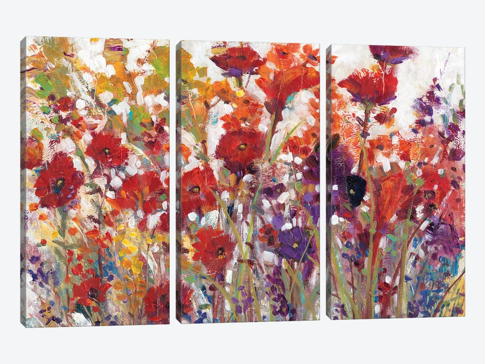 Variety Of Flowers I by Tim OToole 3-piece Canvas Art Print