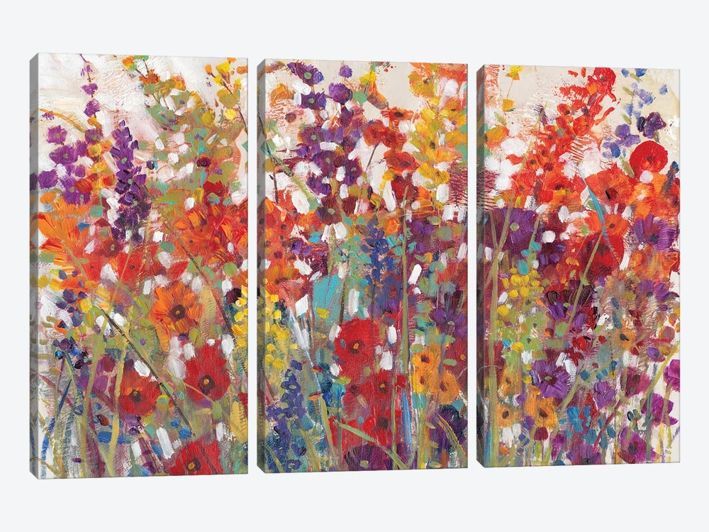 Variety Of Flowers II by Tim O'Toole 3-piece Canvas Art
