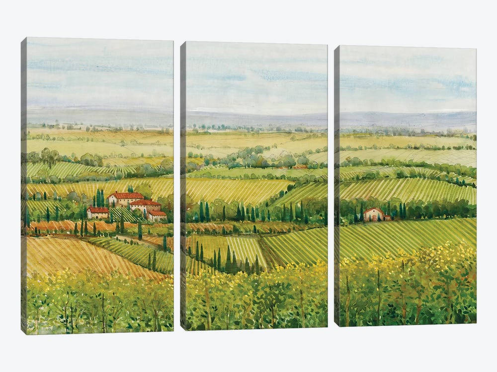 Wine Country View I by Tim O'Toole 3-piece Canvas Artwork
