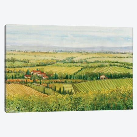Wine Country View I Canvas Print #TOT277} by Tim OToole Canvas Print