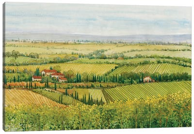 Wine Country View I Canvas Art Print
