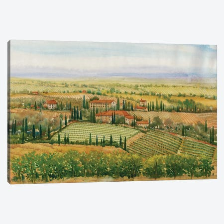 Wine Country View II Canvas Print #TOT278} by Tim OToole Canvas Artwork