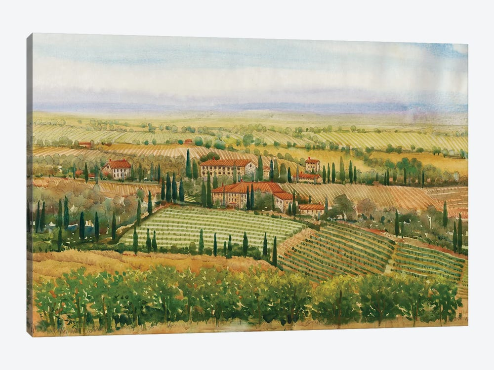 Wine Country View II by Tim O'Toole 1-piece Canvas Print