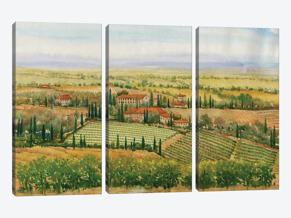 Wine Country View II by Tim O'Toole 3-piece Canvas Art Print