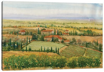 Wine Country View II Canvas Art Print